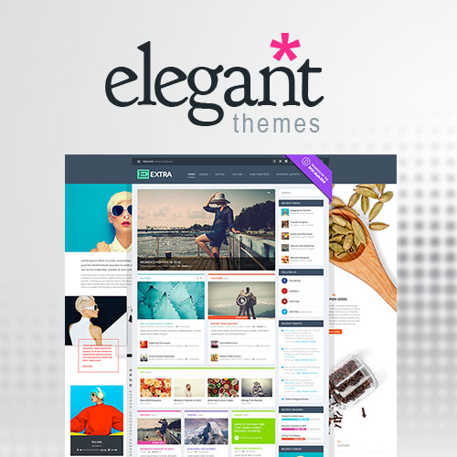 Elegant Themes Extra WordPress Theme