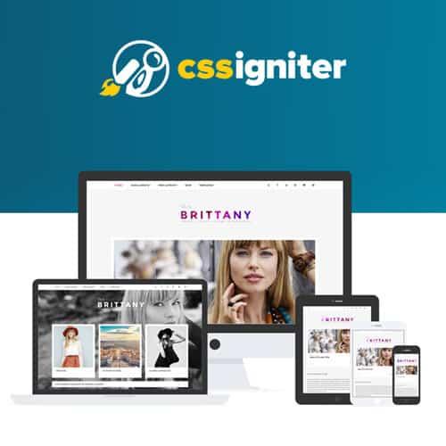 CSS Igniter Brittany WordPress Theme